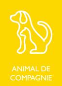 ANIMAL DE COMPAGNIE